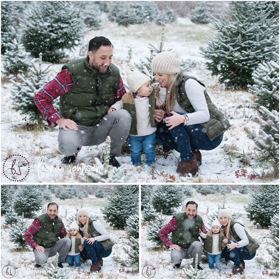 tree farm family snow session
