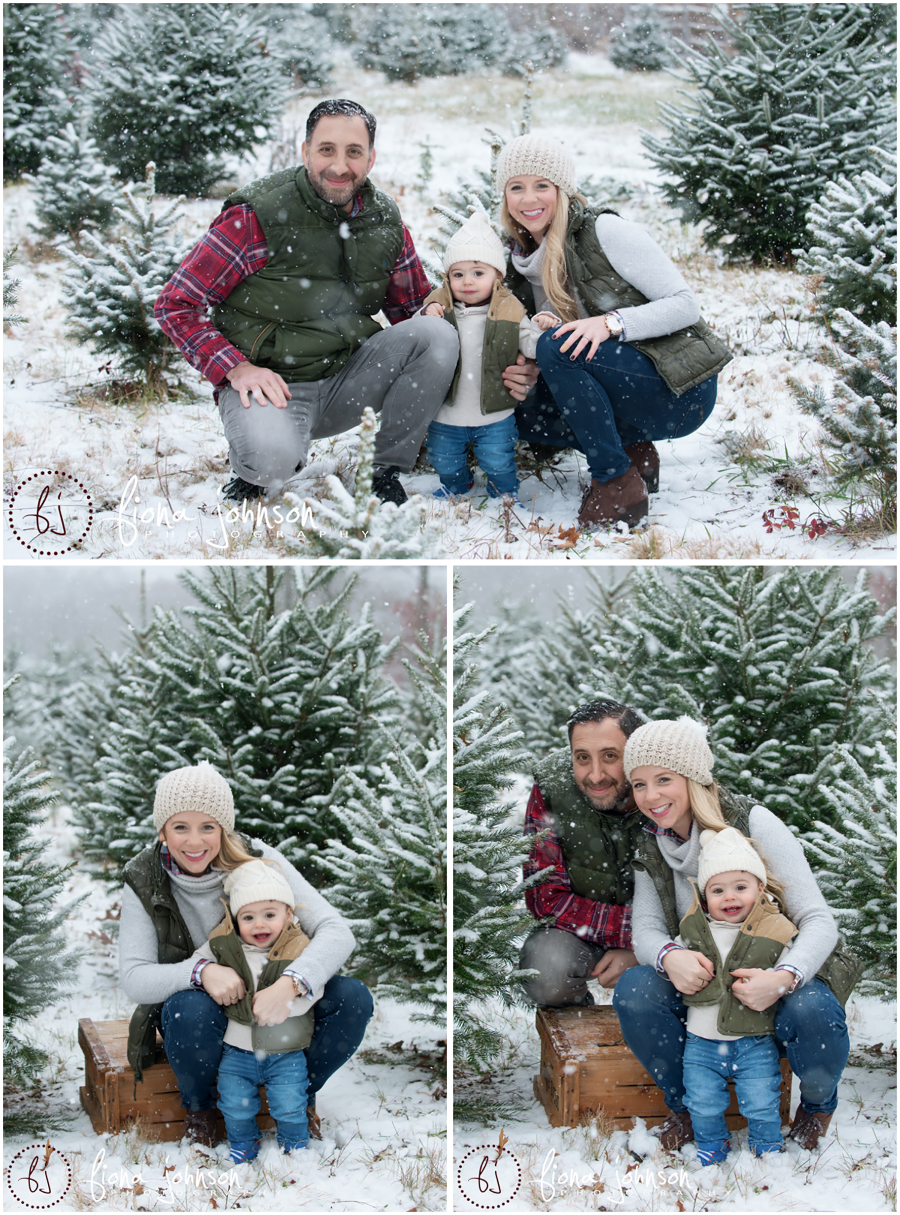 tree farm family snow session