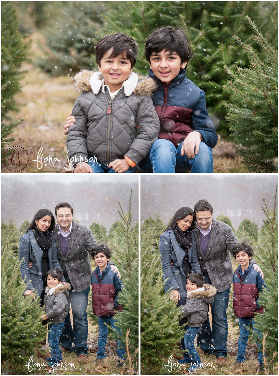 tree farm family photography session