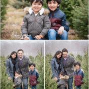 tree farm family photo session