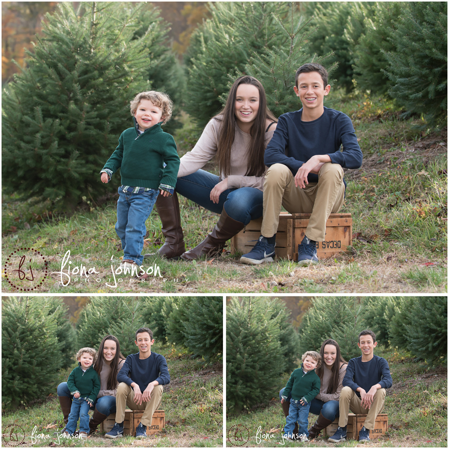 tree farm photography session